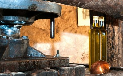 7 Tips For Recognizing Real Extra Virgin Olive Oil